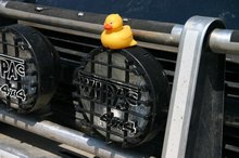 Have you seen this duck? $1,000 reward for safe return.