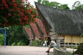 Typical Batak houses