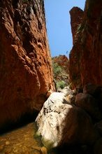 Standley Chasm in the midday sun